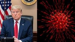 Donald Trump: To szczyt pandemii w USA. Teraz będziemy szli w dół - miniaturka