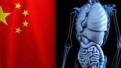 Szokujące! B. doradca Trumpa: W Chinach ma miejsce przymusowe pobieranie ludzkich narządów - miniaturka
