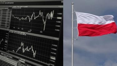 Brawo Polska! Eksportowy rekord wszechczasów - miniaturka