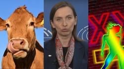 Sprzeciwia się gwałceniu krów - domaga się legalizacji prostytucji - miniaturka