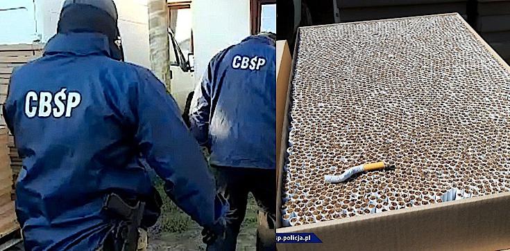 Cela Plus: Pakowali ,,lewe'' papierosy. CBŚP Zatrzymało 26 osób. Skarb Państwa mógł stracić nawet 10 mln złotych - zdjęcie