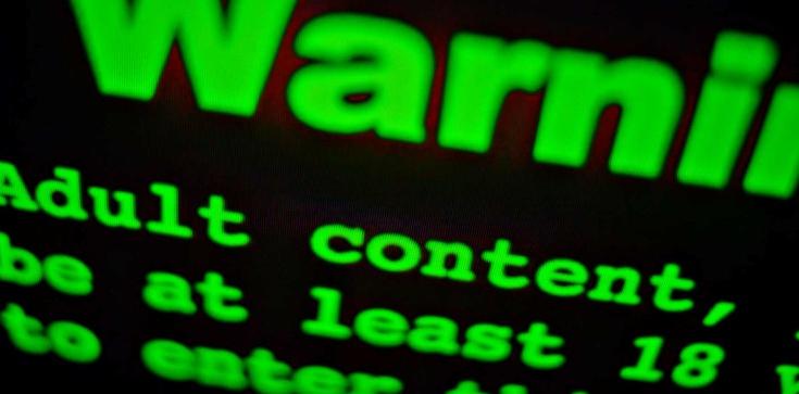 Oglądanie pornografii... prawem człowieka? Sprawę rozstrzygnie Trybunał - zdjęcie