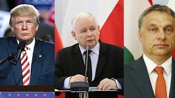 Tomasz Sakiewicz: Skąd wzięła się konserwatywna rewolucja - miniaturka