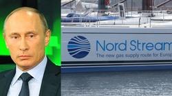 Otrucie Nawalnego. Niemiecki polityk: Putin rozumie tylko język siły! Musi być odpowiedź UE ws. Nord Stream 2 - miniaturka