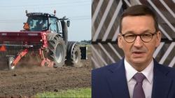 Rolnicy do Premiera: Odblokować restauracje i stołówki, bo nie ma popytu na nasze produkty - miniaturka