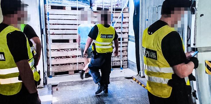 Cela plus: 6 mln papierosów ukryte w... burakach. Kierowcy grożą 3 lata więzienia - zdjęcie