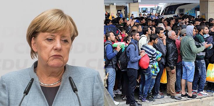 Niemcy mogły zamknąć granicę przed imigrantami w 2015 r. Dlaczego tego nie zrobiono? - zdjęcie
