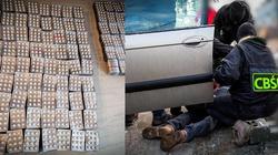Cela plus: Handlowali podrabianymi lekami na wielką skalę. 13 osób w rękach CBŚP - miniaturka
