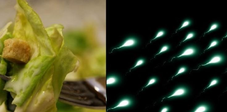 Wegetarianie mają słabą spermę i częściej chorują - zdjęcie