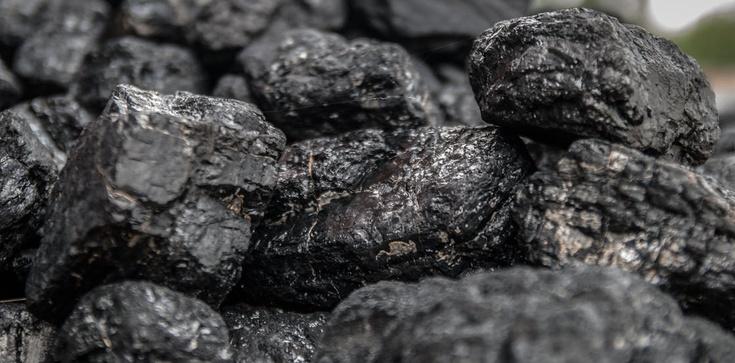 Niemcy bronią swojego węgla, a polski im śmierdzi!  - zdjęcie