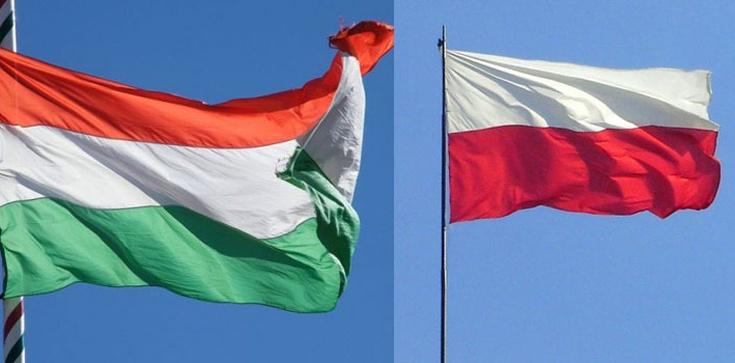 """Deklaracja """"braterskiej"""" solidarności wobec Polski - zdjęcie"""
