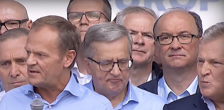 Koalicja Europejska się WŚCIEKNIE!!! Ostatni sondaż przed wyborami, PiS wygrywa - zdjęcie