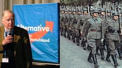 Czy AfD to zagrożenie dla Polski? Andrzej Talaga dla Frondy - miniaturka