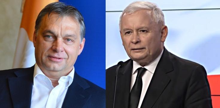 Czy Polacy i Węgrzy ,,przeorają'' Europę? Ryszard Czarnecki dla Frondy - zdjęcie