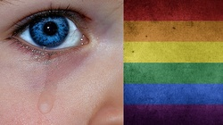 Gwałcili i wypożyczali pedofilom adoptowane dziecko. Wciąż aktualne - NIE dla gejowskiej adopcji!!! - miniaturka