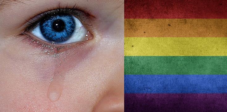 Gwałcili i wypożyczali pedofilom adoptowane dziecko. Wciąż aktualne - NIE dla gejowskiej adopcji!!! - zdjęcie