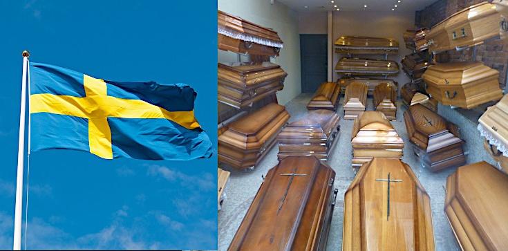 Rośnie bunt Szwedów: Zatrzymać ludobójstwo - zdjęcie
