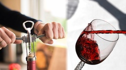 o. Placyd Koń dla Frondy: Co Biblia mówi o piciu alkoholu? - miniaturka