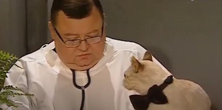 Mann kpi z obostrzeń sylwestrowych: Można wychodzić tylko po karmę dla kota [Wideo] - zdjęcie