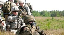 V4: NATO jest filarem światowego bezpieczeństwa - miniaturka