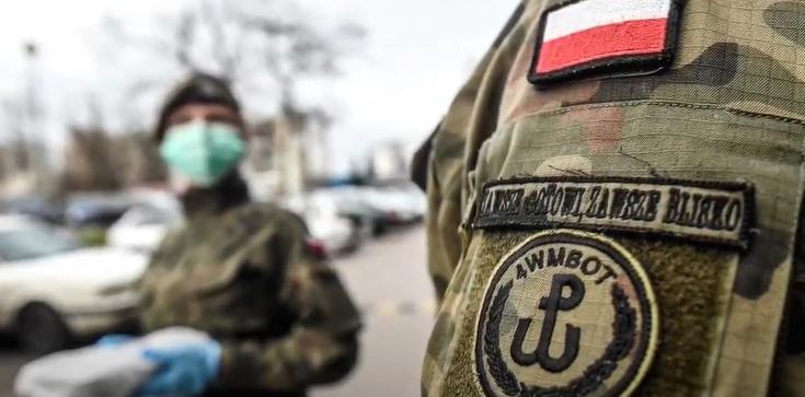 MON chce skierować do 20 tys. żołnierzy na walkę z koronawirusem - zdjęcie