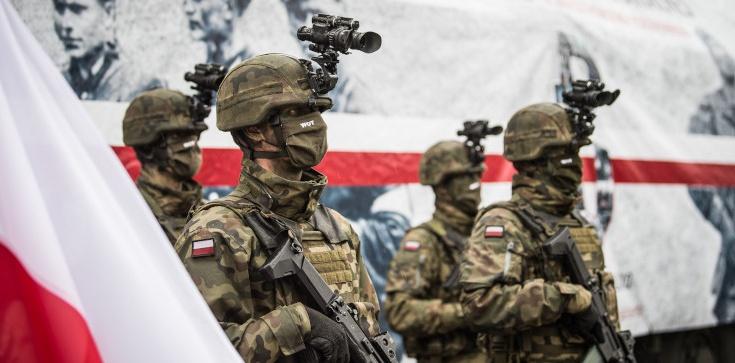 Terytorialsi rosną w siłę! - zdjęcie