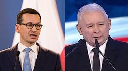 Polska gospodarka - mały spadek i... potężne odbicie - miniaturka