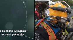 Układ w branży nurkowej? ,,Magazyn śledczy Anity Gargas'' - miniaturka
