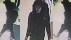 Tak przygotowywał się do zamachu Salman Abedi, terrorysta z Manchesteru - miniaturka