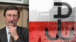 Prof. Jan Żaryn wyjaśnia, dlaczego powinniśmy celebrować pamięć o Powstaniu Warszawskim - miniaturka