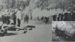 Wkładano im w usta gips, gdy krzyczeli z bólu - Zbrodnia pomorska 1939 to 30 tys. Polaków zamordowanych przez Niemców - miniaturka