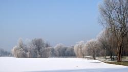 Badacze: Globalne ocieplenie może... ochłodzić Europę - miniaturka