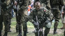 Najpotężniejsze armie świata. Jak wypadła Polska? - miniaturka