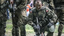 MON stawia na polski sprzęt! Kontrakty na 700 mln - miniaturka