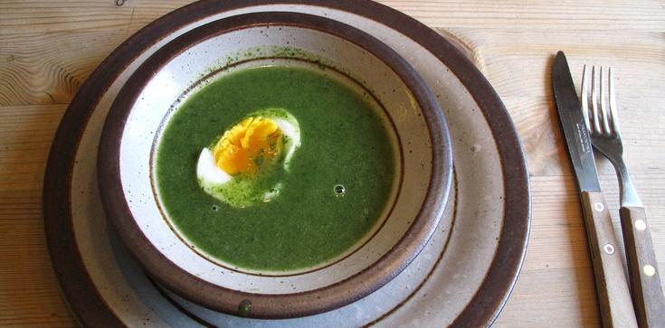 Dziś mam ochotę na... zupę z pokrzywy - zdjęcie
