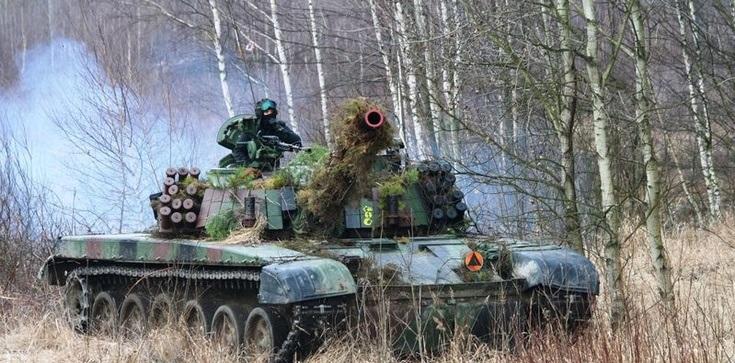"""Manewry wojsk Polski, Litwy i Ukrainy """"Trzy miecze 2021"""" już w lipcu - zdjęcie"""