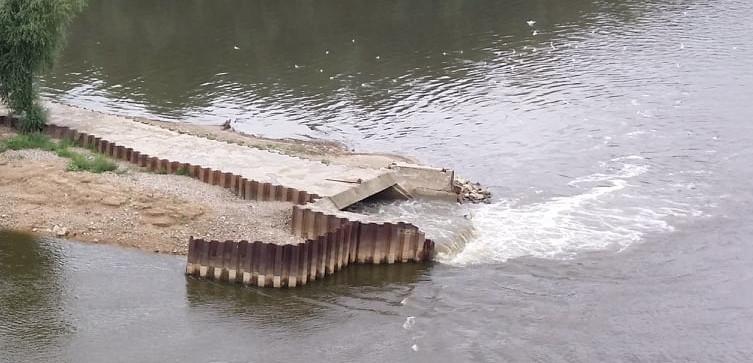 Ekoaktywiści: ,,Czajka'' to nie katastrofa, to ,,przekarmienie'' rzeki - miniaturka
