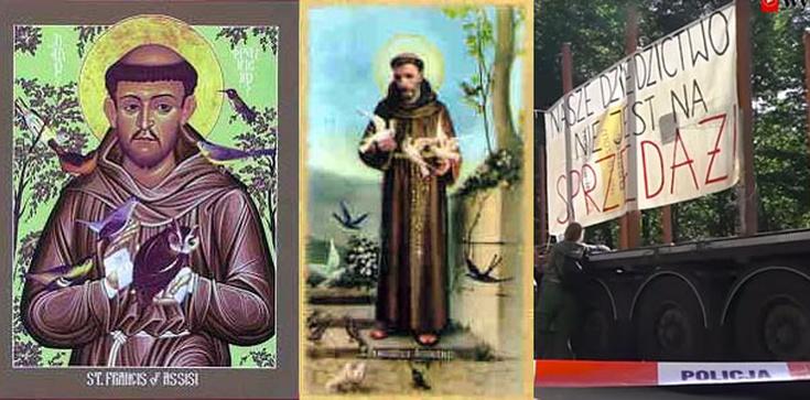 Franciszek z Asyżu - Święty ekolog - zdjęcie