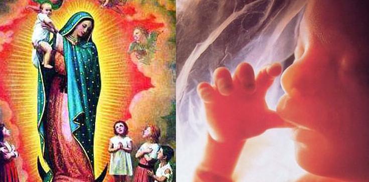 Modlitwa do Matki Bożej za nienarodzonych  - zdjęcie