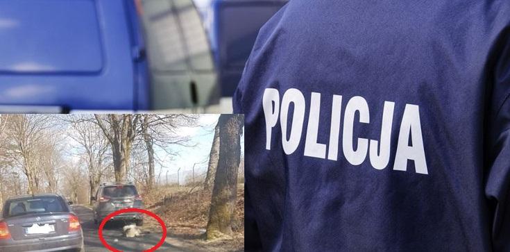 Szokujące! Policja zatrzymała byłego senatora PiS za znęcanie się nad psem ze szczególnym okrucieństwem - zdjęcie