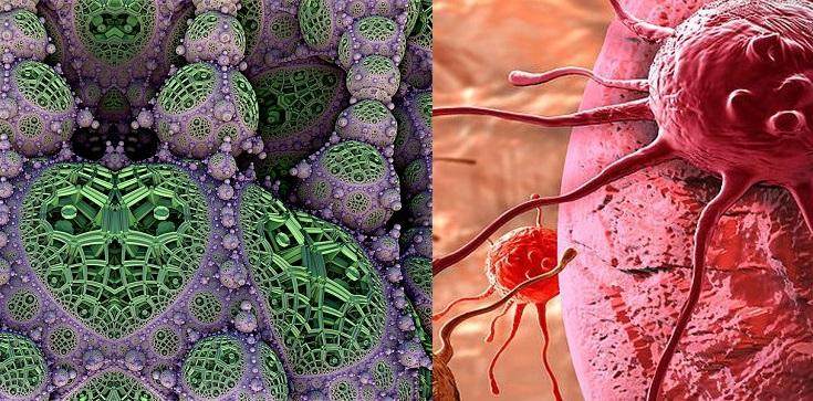 Belgia. Komórki raka zniszczono nanocząsteczkami miedzi - zdjęcie