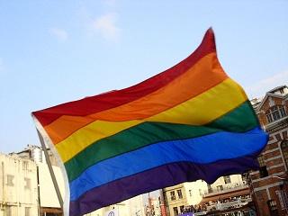 Flaga gejowska (Wikipedia)
