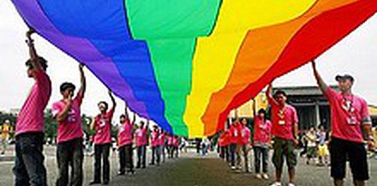 Petersburg zakazał propagowania homoseksualizmu - zdjęcie