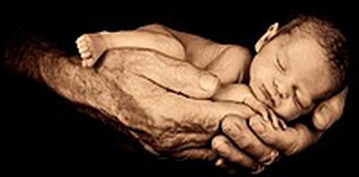 """Nowe dziecko w """"oknie życia"""" - zdjęcie"""