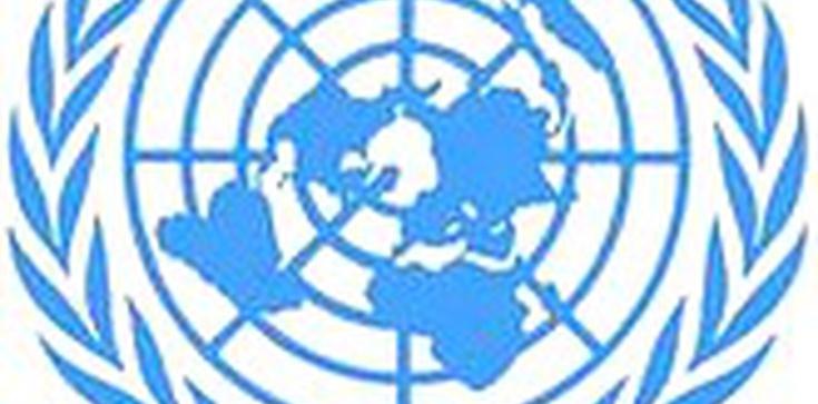 """""""Prześladowania chrześcijan wymagają interwencji ONZ"""" - zdjęcie"""