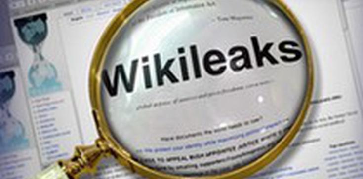 Wikileaks: Źródłem homofobii w Polsce jest Kościół - zdjęcie