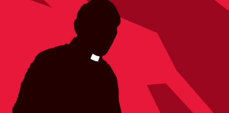 Z Papieżem przeciw homoherezji - zdjęcie